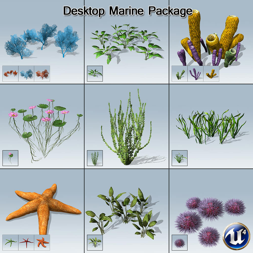 Desktop Marine Package (UE4)