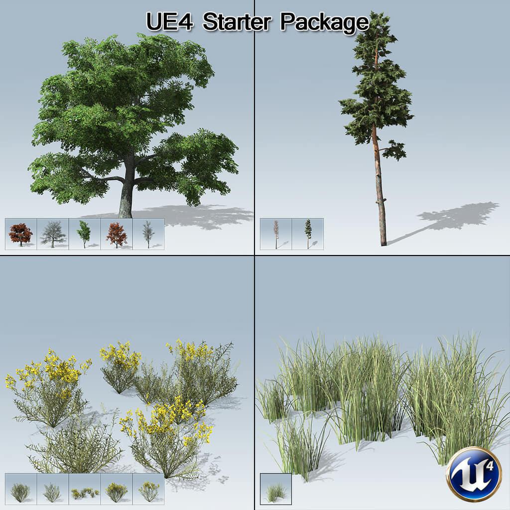 UE4 Starter Package (UE4)