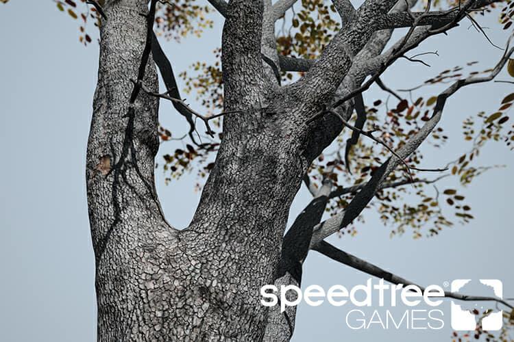 SpeedTree Games Indie – SpeedTree